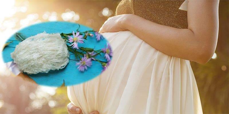Tổ yến chưng cao cấp đem đến nhiều công dụng hoàn hảo cho phụ nữ mang thai